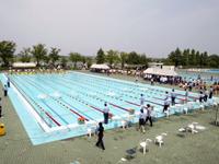 25mプール 競泳7コース(公認プール)